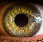 details eye