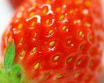 details strawberry