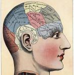 memory brain map