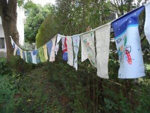 franti to cville prayer flags 012