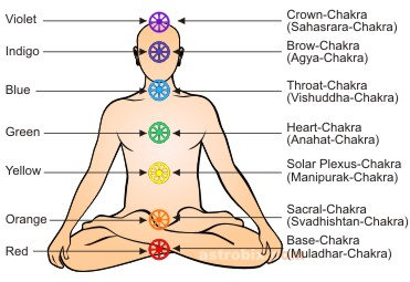 P8 Chakras with labels