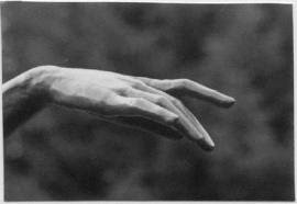 P9 ballet_hand