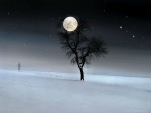you are the light winter solstice moon