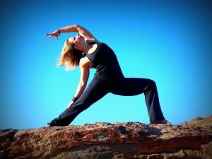 flength strexibility reverse warrior