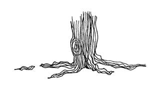 roots 3