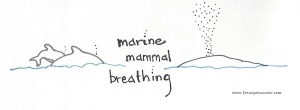 marine mammal breathing 102515