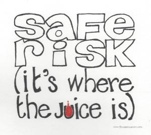 safe risk 011216