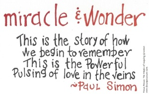 miracle & wonder quote 033016