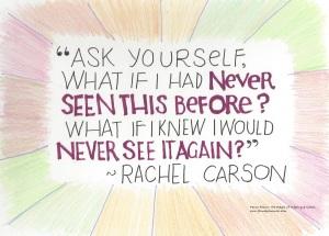 carson quote 071516