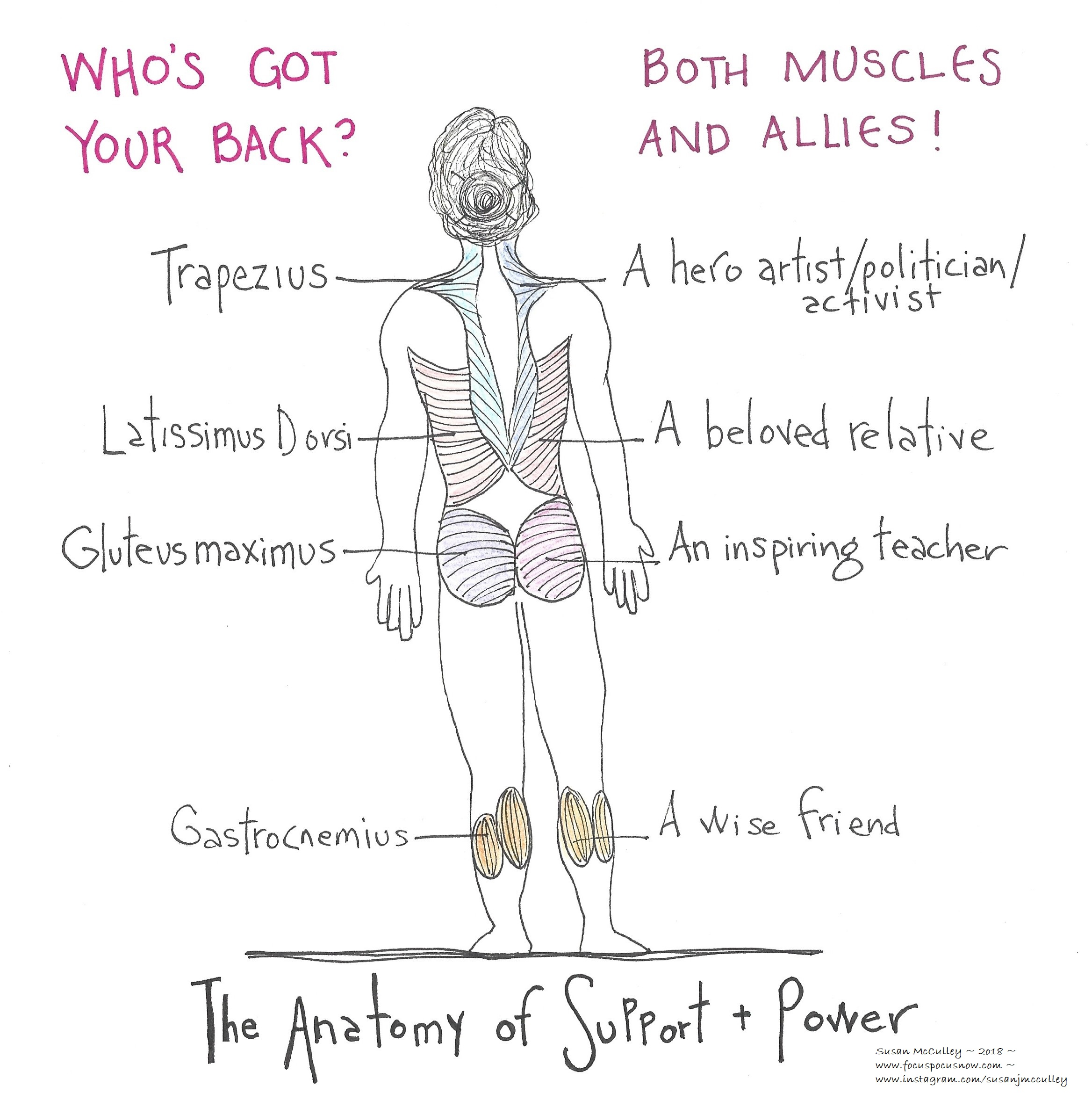 the anatomy of support and power | Focus Pocus